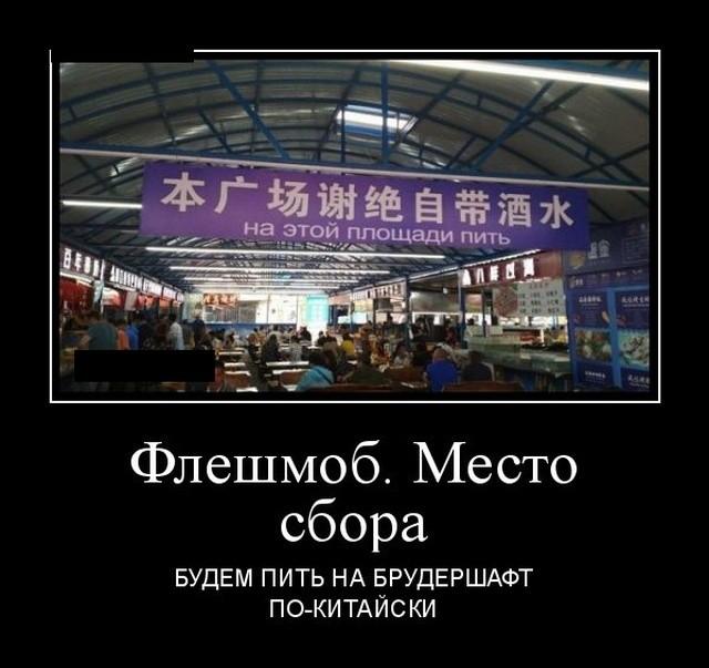 Демотиваторы 24.09.2019 (20 фото)