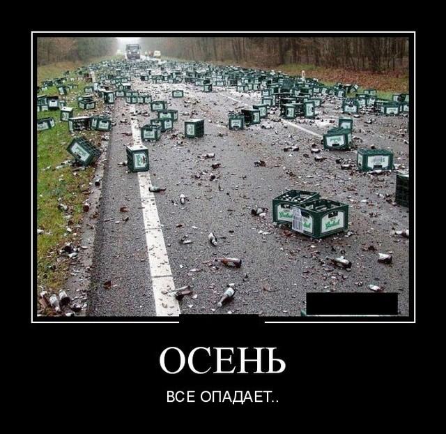 Демотиваторы 26.09.2019 (20 фото)