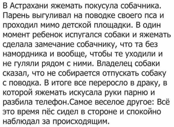 """Яжематери"" на просторах Сети (15 фото)"