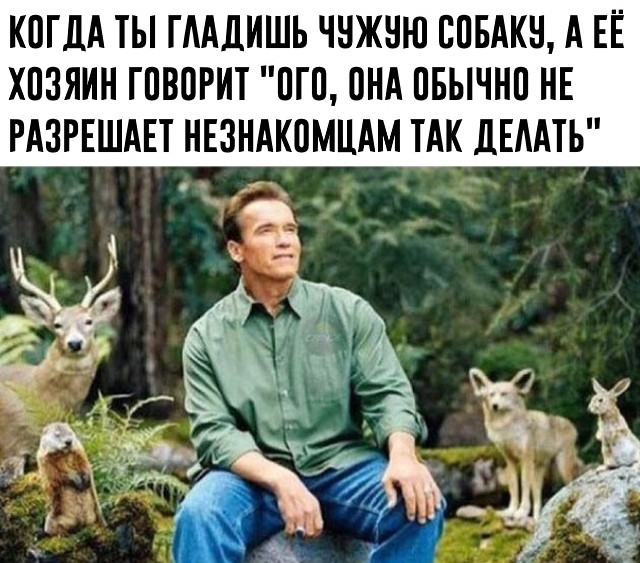 Подборка прикольных фото (63 фото) 04.10.2019
