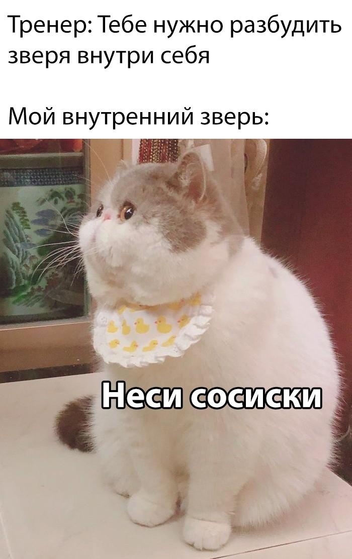 Подборка прикольных фото (63 фото) 09.10.2019