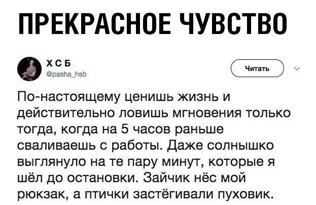 Подборка прикольных фото (61 фото) 11.10.2019