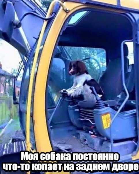 Подборка прикольных фото (63 фото) 17.10.2019