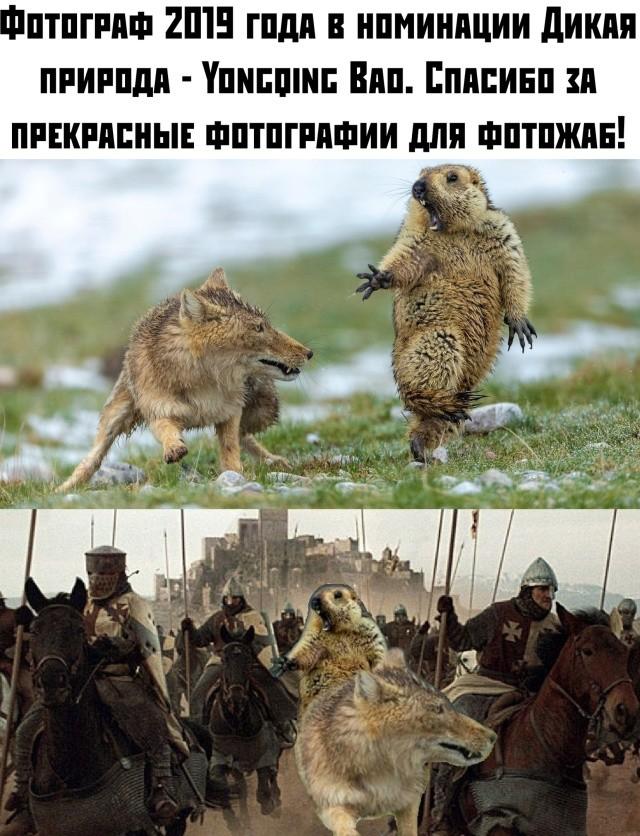 Подборка прикольных фото (61 фото) 18.10.2019