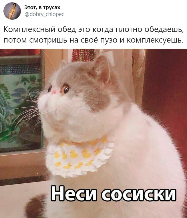 Подборка прикольных фото (62 фото) 23.10.2019