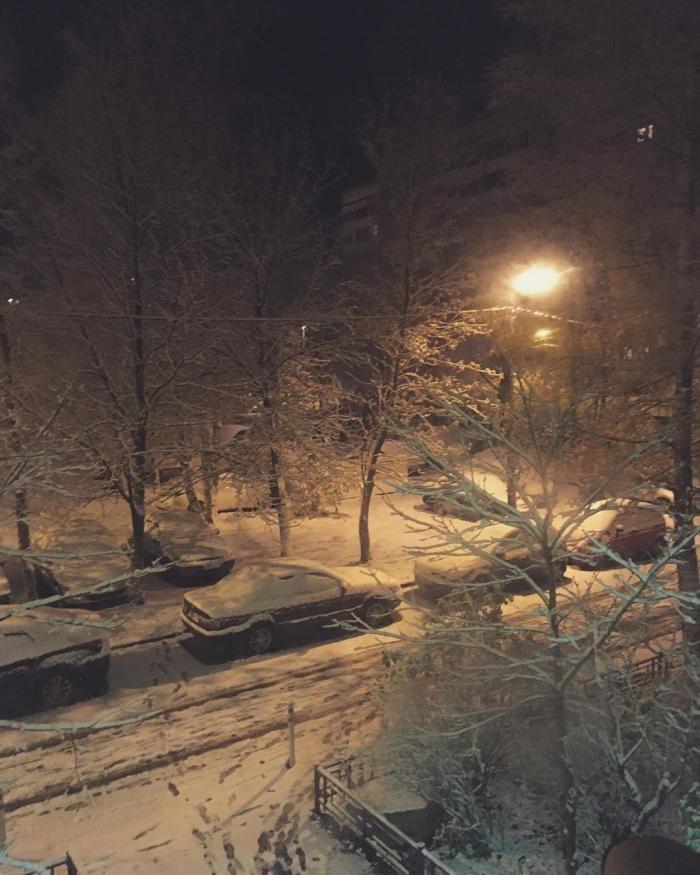 Петербуржцы делятся фотографиями первого снега (14 фото)