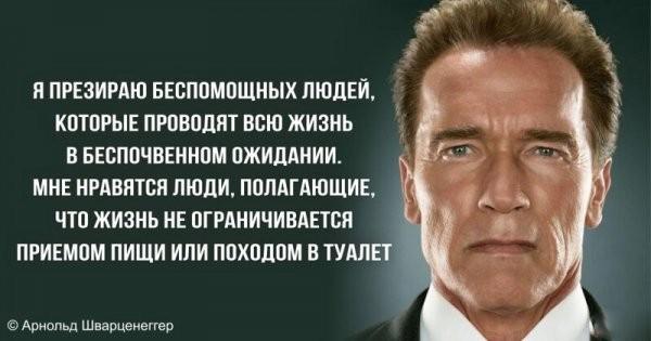 Цитаты Железного Арни для мотивации и не только
