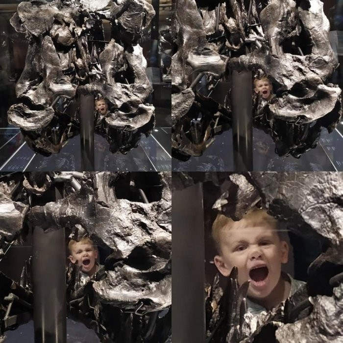 Что-то пошло не так на этих фотографиях (20 фото)