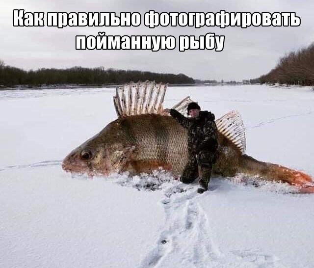 Подборка прикольных фото (32 фото) 30.08.2019