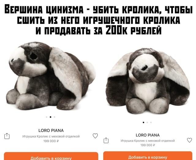 Подборка прикольных фото (65 фото) 14.11.2019