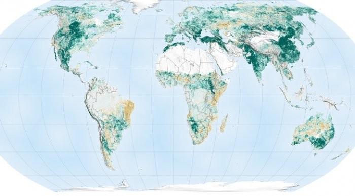 Необычные карты и интересные факты об окружающем мире (15 фото)