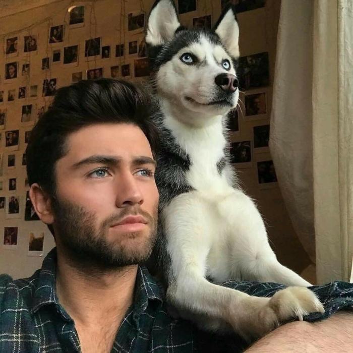 Пес копирует мимику хозяина (9 фото)