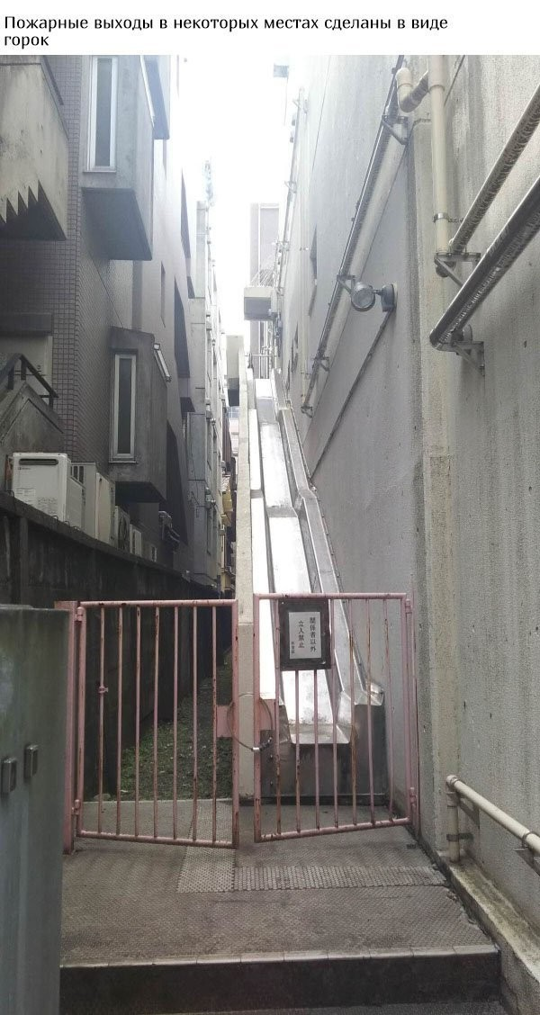 Все для комфорта жителей Японии (16 фото)