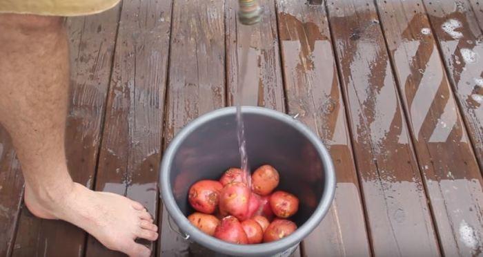 Простой способ быстро почистить ведро картофеля (5 фото)
