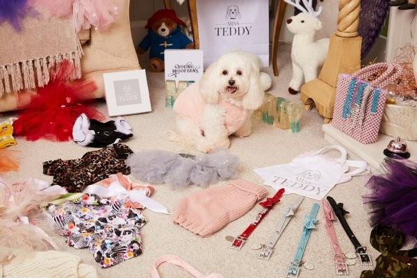 Англичанка потратила почти на три тысячи евро на подарки собаке