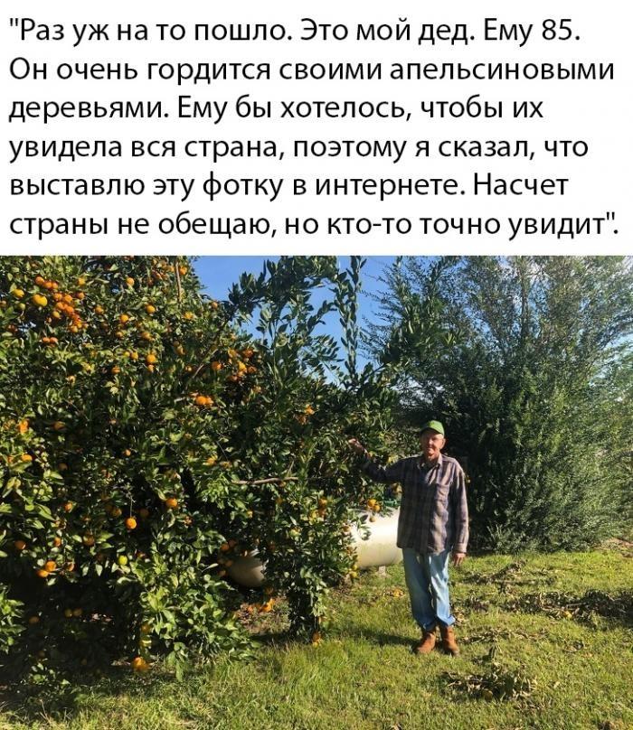 Подборка прикольных фото (67 фото) 10.12.2019