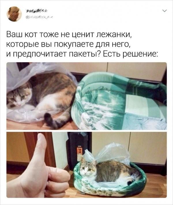 Забавные твиты от смекалистых пользователей (14 фото)