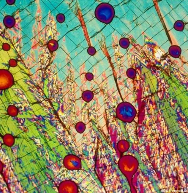 Кофе, соль, сахар и водка под микроскопом (4 фото)