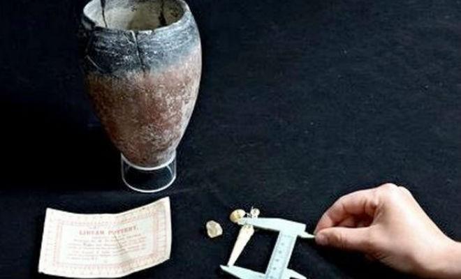 Удивительные артефакты, найденные людьми у себя дома (3 фото)