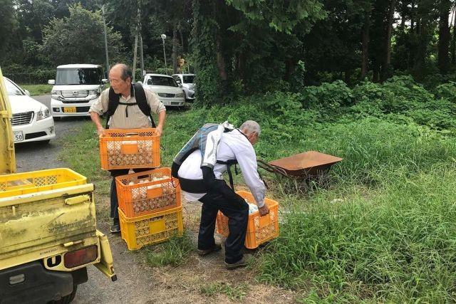 Японские пенсионеры стали носить экзоскелеты для работы (2 фото)