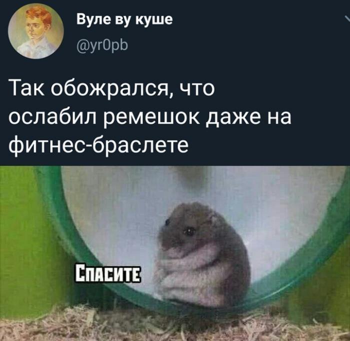 Подборка прикольных фото (62 фото) 18.12.2019