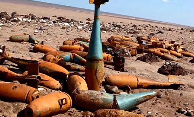 Находки на берегу, найденные после ураганов (3 фото)