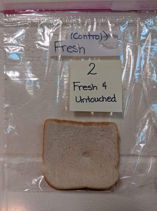 Американским школьникам на примере хлеба объяснили о руках (6 фото)