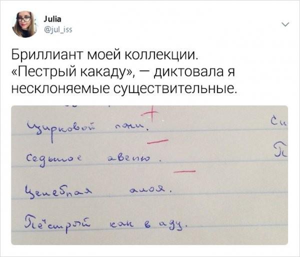 Забавные и правдивые твиты о школьной жизни от учительницы (25 фото)