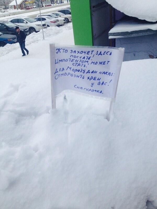 Странные снегурочки, которые поднимут вам настроение (17 фото)