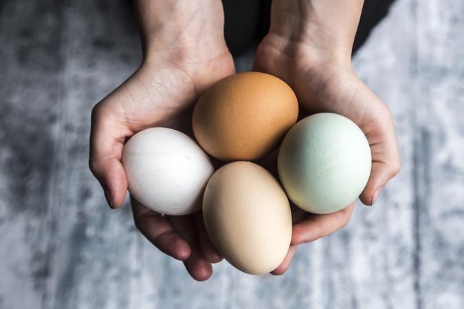 Почему коричневые куриные яйца лучше белых (фото)