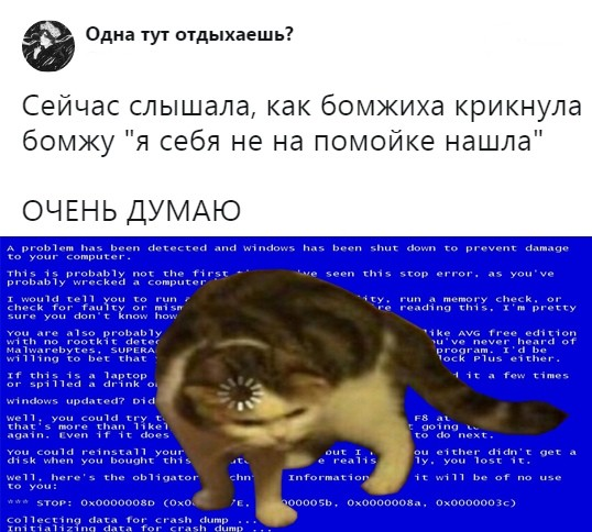Подборка прикольных фото (64 фото) 27.12.2019