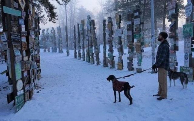90 000 дорожных знаков в одном из лесов Канады (7 фото)