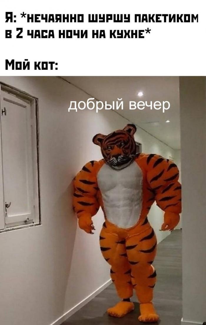 Подборка прикольных фото (64 фото) 09.01.2020