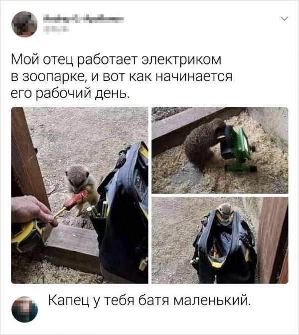 Подборка забавных и хлестких комментариев из соцсетей (18 фото)