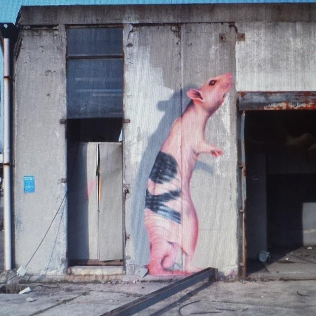 На эти граффити в Милане стоит смотреть внимательнее (10 фото)