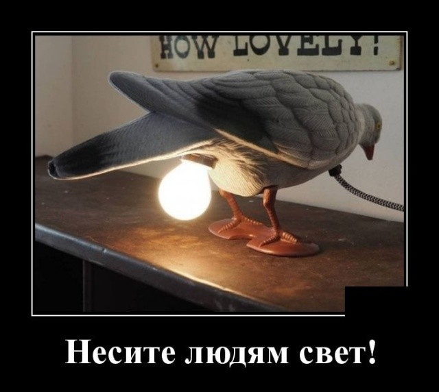 Демотиваторы (20 фото) 15.01.2020
