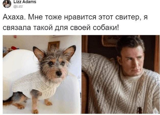 Американец заказал свитер, как у Криса Эванса (5 фото)