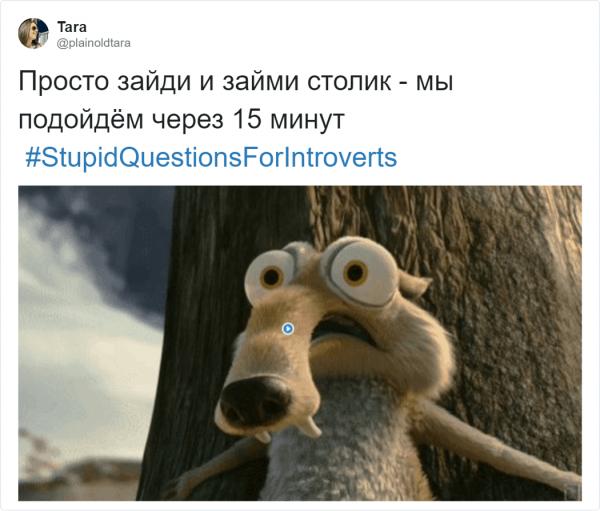 Страшный сон интроверта: глупые вопросы (17 фото)