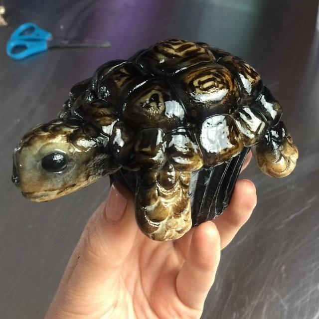 Британский кондитер печет реалистичные 3D-торты по фото (17 фото)