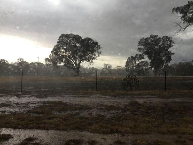 В Австралии пошел дождь и это подарок небес (7 фото)