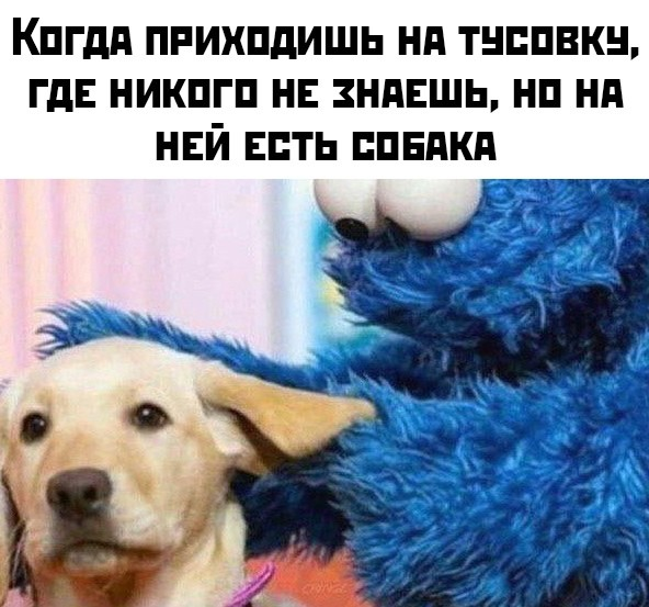 Подборка прикольных фото (65 фото) 21.01.2020