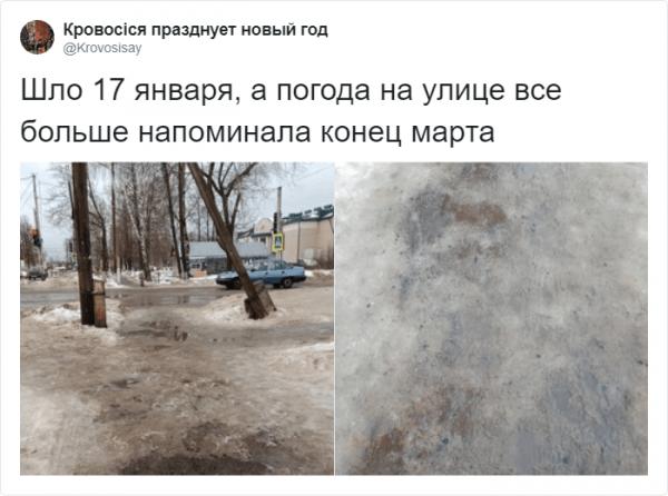 В соцетях активно обсуждают погоду про аномальную зиму (15 фото)