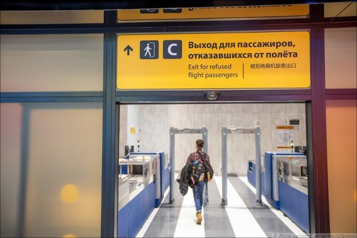 Как выглядит новый терминал C в Шереметьево (45 фото)
