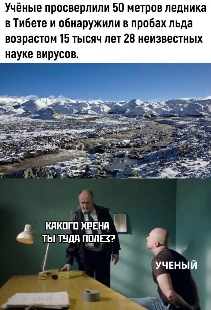 Подборка прикольных фото (61 фото) 25.01.2020