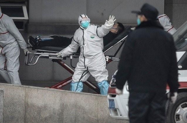 В Китае назвали вероятный источник коронавируса (2 фото)