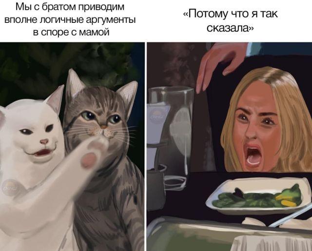 Две женщины орут на кота: лучший мем 2019 года продолжает (18 фото)