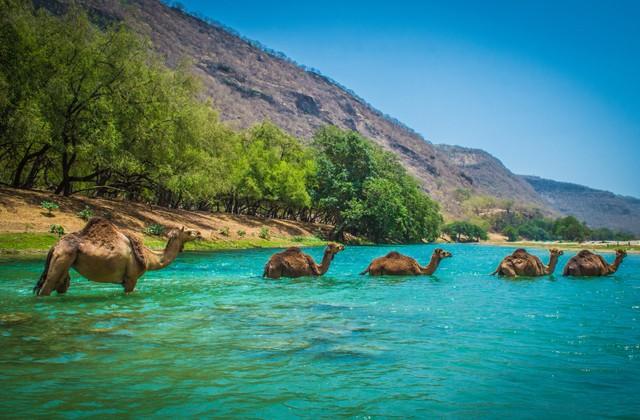 Природные и исторические достопримечательности Омана (10 фото)
