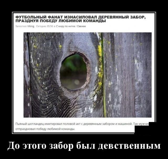 Демотиваторы (20 фото) 10.02.2020