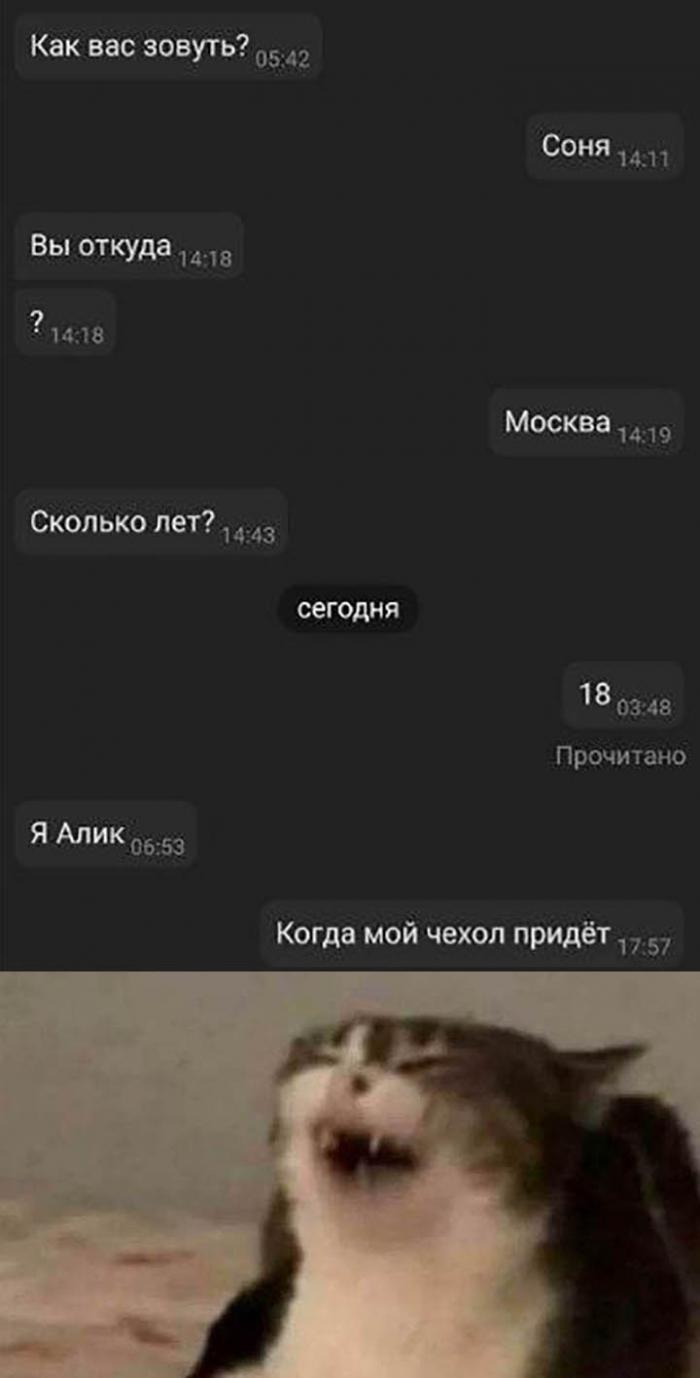 Подборка прикольных фото (66 фото) 12.02.2020