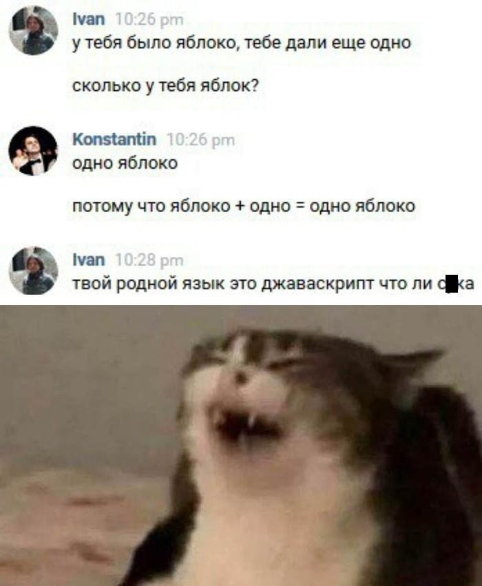 Подборка прикольных фото (65 фото) 14.02.2020